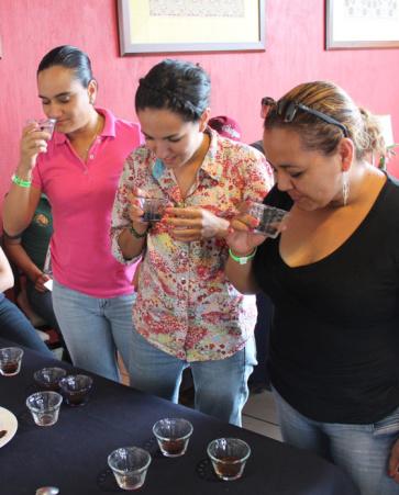 Tour Especializado Experiencias del Café | Salida de Tepic