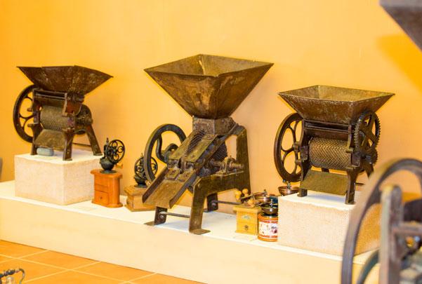 Café: Historia y Tradición