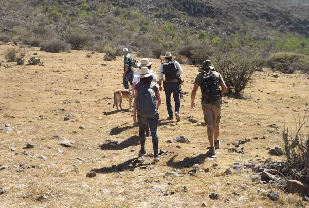 Caminata en el cañón