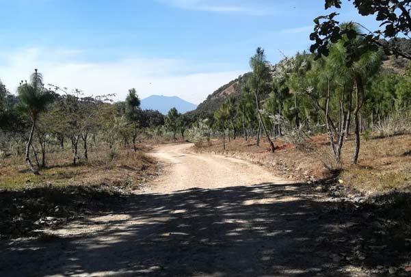 Caminata de montaña por los cerros de la primavera