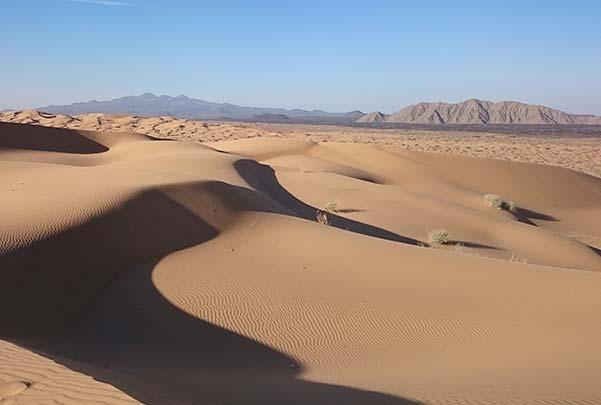 3 días por el Desierto de Sonora