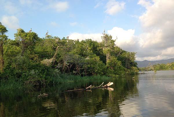 La Laguna de Manialtepec | Por la mañana