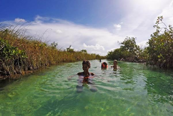 Muyil Selva y Flotación