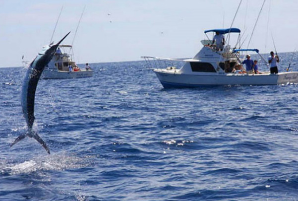 Pesca de Altamar