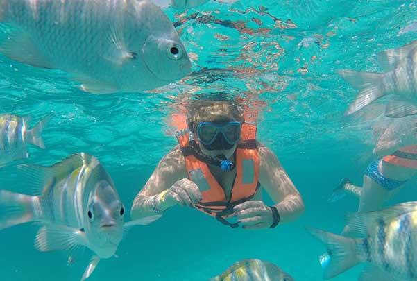 Zipline and Shipwreck Snorkeling Tour