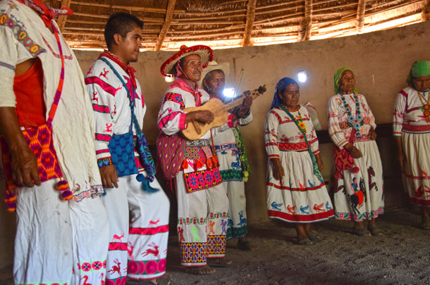 Tour Experiencia Huichol | Salida de San Blas