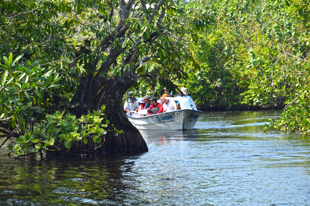 Tour Jungla San Blas | Salida de Rincón de Guayabitos